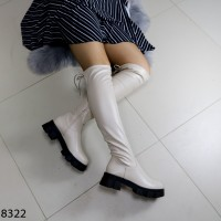 Сапоги_8322